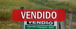 VENDIDO: 174 has en Darregueira