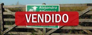 VENDIDO: 65 has en San Miguel (Adolfo Alsina)