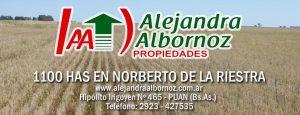 EN VENTA: 1100 has en Norberto de la Riestra
