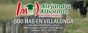 EN VENTA: 500 has en Villalonga