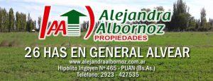 EN VENTA: Finca de 26 has en General Alvear –Mendoza