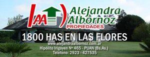 EN VENTA: 1800 has en Las Flores