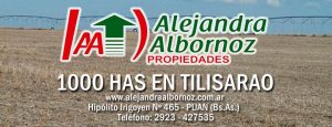 EN VENTA: 1000 has en Tilisarao – San Luis