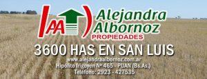 EN VENTA: 3600 has en San Luis (Zona Alto Pelado)