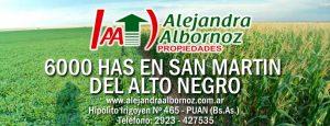 EN VENTA: 6000 has en San Martín del Alto Negro (San Luis)