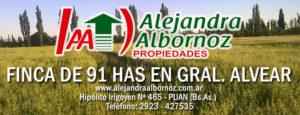 EN VENTA: Finca de 91 has en Mendoza