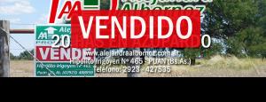 VENDIDO: 20 has en Azopardo