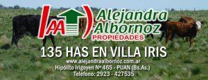 EN VENTA: 135 has en Villa Iris