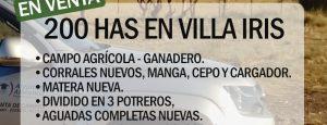 EN VENTA: 200 has en Villa Iris