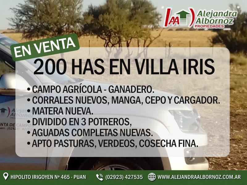 200 Villa Iris