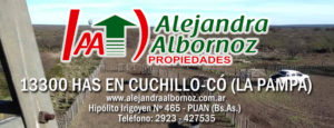 EN VENTA: 13300 has en zona Cuchillo-Có (La Pampa)
