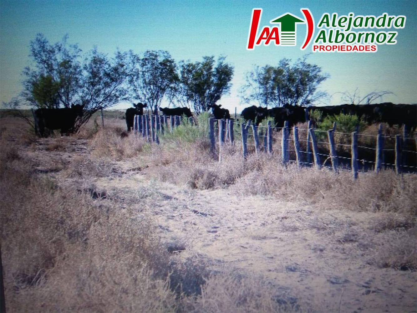 La Pampa septiembre 2