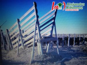 La Pampa septiembre 4