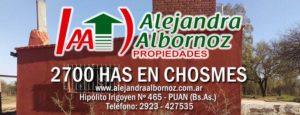 EN VENTA: 2700 has en Chosmes (San Luis)